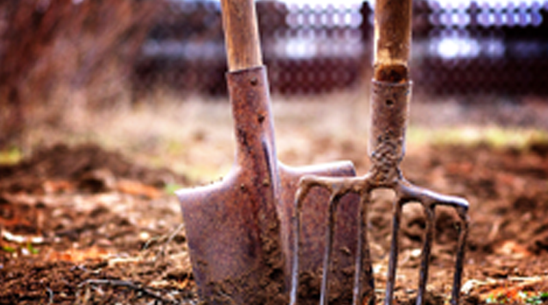 Lavoratori agricoli e indennità NASpI